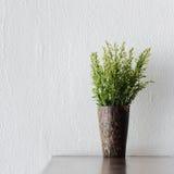 Nya blommor i en koppgarnering för kafé, restaurang eller hem Royaltyfria Foton