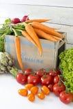 Nya bondemarknadsgrönsaker Royaltyfri Fotografi
