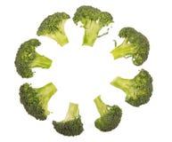 Nya broccoliflorets som läggas ut i cirkeln som isoleras på vit Royaltyfri Bild