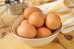 Nya bruna ägg Arkivbild