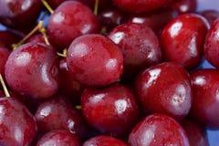 nya Cherry Royaltyfri Foto