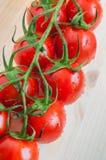 Nya Cherry Tomatoes Arkivfoton