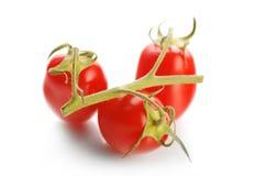 Nya Cherrytomater Arkivbild