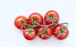 Nya Cherrytomater på vit bakgrund Royaltyfri Fotografi