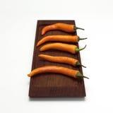 Nya chilies i rad, närbild Royaltyfri Fotografi