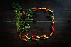 Nya chilipeppar på trätabellen av utrymme för annonsering av t Arkivfoto
