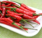 nya chilis Fotografering för Bildbyråer
