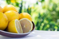 Nya citroner på tabellen i den öppna luften Selektivt fokusera Arkivbilder