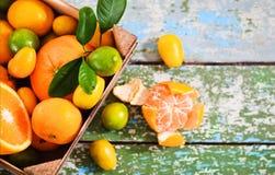 Nya citrusfrukter i det trä boxas Arkivfoton