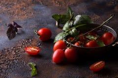 Nya druvatomater med basilika för bruk som matlagningingredienser Arkivfoton