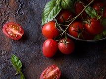 Nya druvatomater med basilika för bruk som matlagningingredienser Fotografering för Bildbyråer