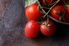 Nya druvatomater med basilika för bruk som matlagningingredienser Arkivfoto