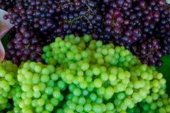Nya druvor i marknad Arkivfoto