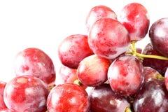Nya druvor på vit bakgrund Arkivfoton