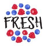Nya etikett och klistermärke för bärfrukt - Arkivbild