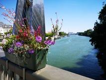 Nya färgrika blommor som sätts i en vas Sena flod i Paris Arkivbilder