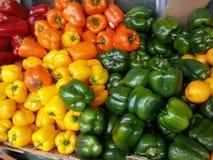 Nya färgrika peppar Fotografering för Bildbyråer