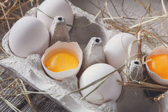 Nya fega vita ägg i låda på lantlig wood bakgrund Royaltyfri Bild