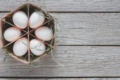 Nya fega vita ägg i låda på lantlig wood bakgrund Royaltyfria Foton