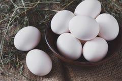 Nya fega vita ägg på säckcloseupen, backgr för organiskt lantbruk Royaltyfri Bild