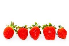 Nya fem och naturliga röda jordgubbar av olika former med gröna sidor, sida - förbi - sida, på vit bakgrund royaltyfria foton