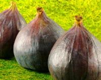 nya figs Arkivbilder