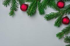 Nya fluffiga röda bollar för granträdfilialer på fasta grå färger Härligt baner för affisch för kort för hälsning för bakgrund fö royaltyfria bilder
