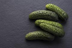 Nya frasiga gurkor på ett skifferbräde Arkivfoto