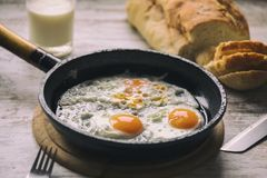 Nya Fried Eggs på olja royaltyfria bilder