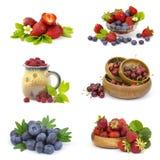 nya frukter för samling Fotografering för Bildbyråer
