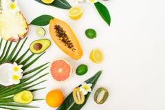 Nya frukter för sommar royaltyfri fotografi