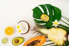 Nya frukter för sommar royaltyfria bilder
