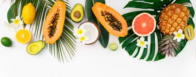Nya frukter för sommar royaltyfri foto