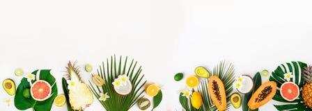 Nya frukter för sommar royaltyfria foton
