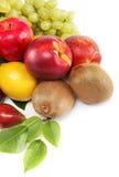 nya frukter inställda färgrika olika nya frukter för bakgrund Royaltyfri Bild