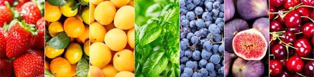 Nya frukter och grönsaker, baner Royaltyfri Fotografi