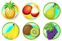 Nya frukter på runda emblem royaltyfri illustrationer