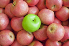 Nya frukter, äpplen Arkivbild