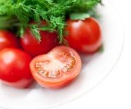 Nya gräsplaner och tomater royaltyfri bild