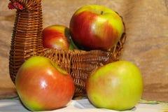 Nya gröna äpplen i en vide- korg härlig livstid fortfarande royaltyfri fotografi