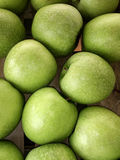 Nya gröna äpplen, Kreta, Grekland Arkivbilder