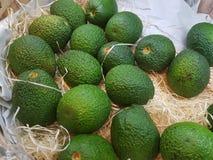 Nya gröna Avoda frukter Royaltyfria Bilder