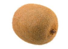 Nya gröna Kiwi Fruit Arkivbild