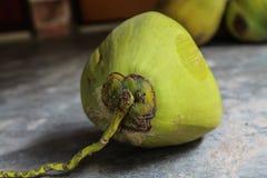 Nya gröna kokosnötter på det konkreta golvet arkivfoto