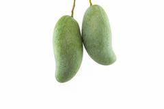 nya gröna mango arkivfoton