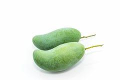 nya gröna mango royaltyfri fotografi