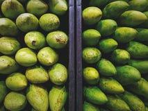 Nya gröna mango med naturligt villkor Royaltyfri Fotografi