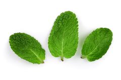 Nya gröna mintkaramellsidor som isoleras på vit bakgrund, bästa sikt Lekmanna- lägenhet fotografering för bildbyråer
