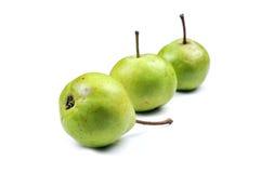 nya gröna pears Arkivfoto