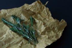 Nya gröna rosmarin på kraft papper och svartbakgrund royaltyfri bild
